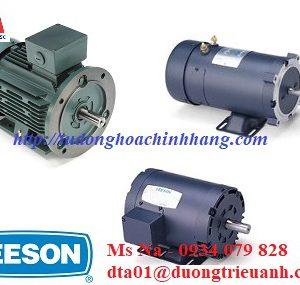 dong co motor Leeson,Leeson electric motor,dong co AC Leeson,Leeson chinh hang,Leeson Vietnam
